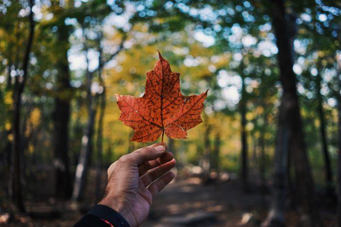 Útikennsla – Kanada